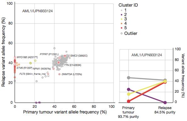 Tumor clones in AML