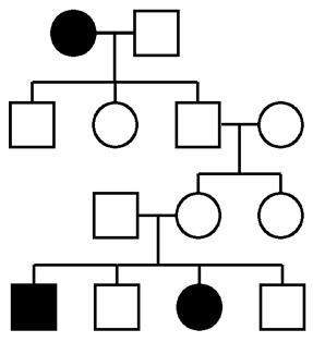 Human genetics pedigree, autosomal recessive