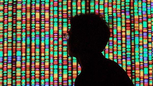 Human genetics complexity